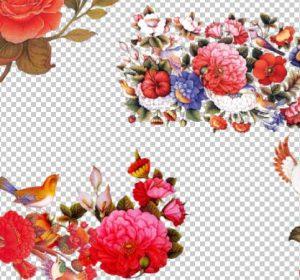 گل و مرغ لایه باز