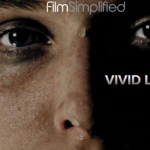 VIVID LUTs Pro