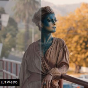 خرید مجموعه کامل IWLTBAP LUTs Color Grading Pack