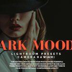 دانلود پریست لایت روم دارک هنری Dark Moody Lightroom Presets & Camera Raw